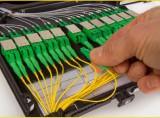 Alpha Ultra High Density Fiber Patch Panel